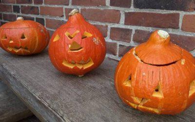 Neues aus der Schule – Basteln nach den Herbstferien